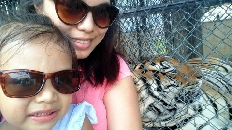 Posing with Sultan the Tiger.