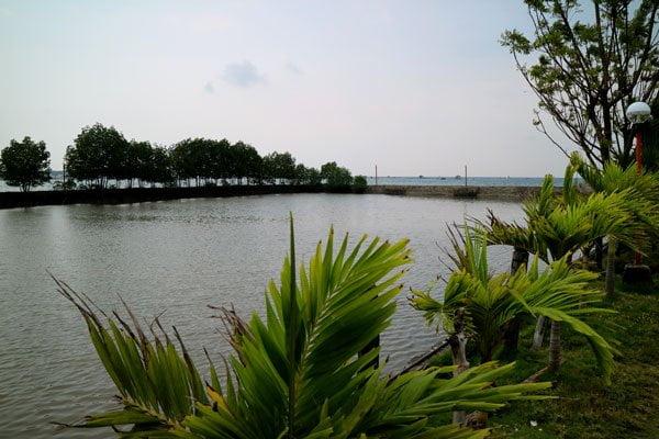 Feliz-Resort-fishpond