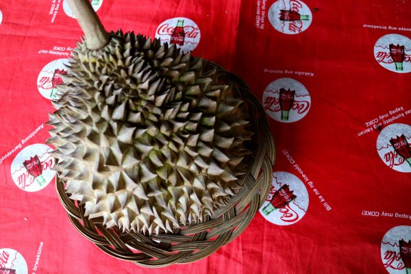 You can have some some durian too!