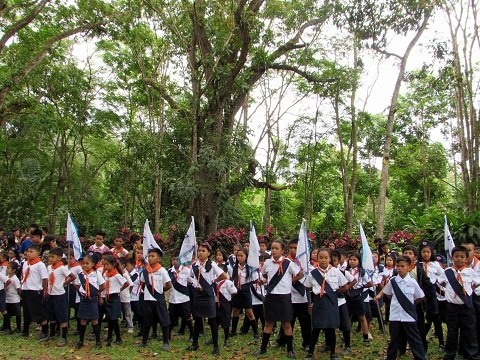 Assembly of Scouts