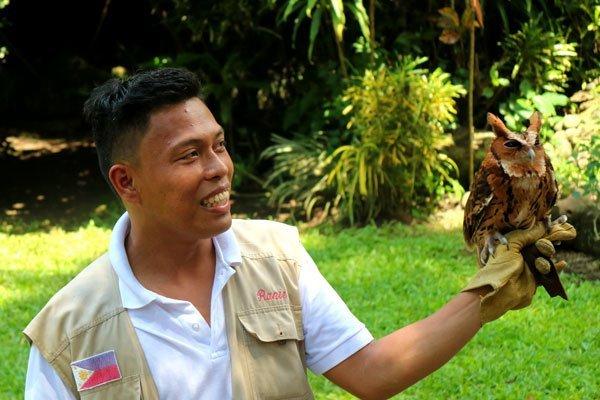 Malagos-bird-show-owl