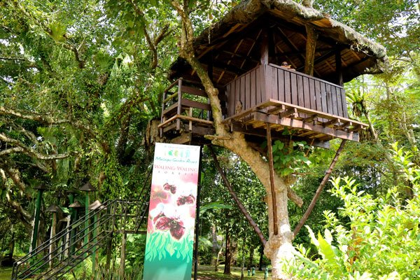 Malagos-Garden-Resort-Waling-Forest-Tree-House