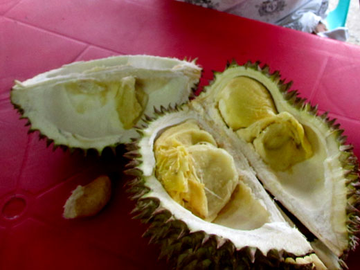 Durian-in-Davao-City