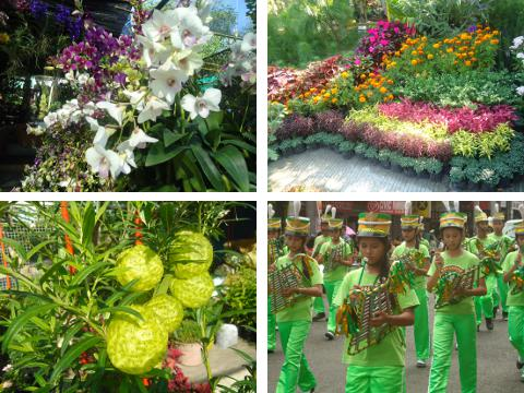 Colorful flowers and parade of musicians at Araw ng Dabaw 2013