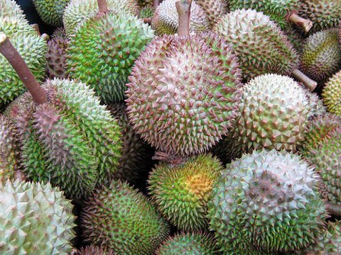 Durian: King of All the Fruit in Davao.