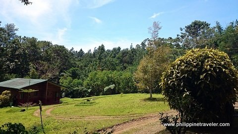 Eden Nature Park Gardenia