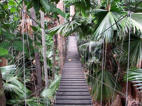 elevated-walk