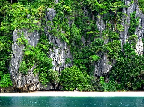 A virgin beach somewhere in the Philippines.