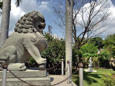 The male lion guarding over the temple.