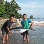 yellow-tunafish-caught-at-nasipit-agusan-del-norte