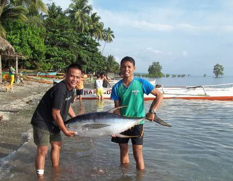 Large yellow tunafish caught at Nasipit in Agusan del Norte.